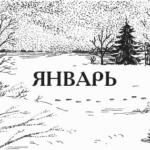 ЯНВАРСКИЕ ХЛОПОТЫ ОГОРОДНИКА
