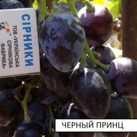 Виноград Черный принц